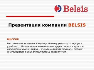 Презентация компании BELSIS