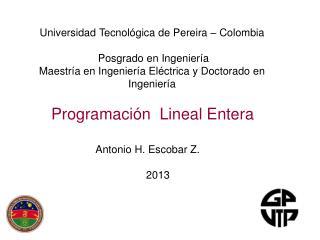 Programaci�n  Lineal Entera