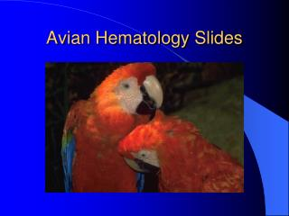 Avian Hematology Slides