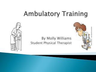 Ambulatory Training
