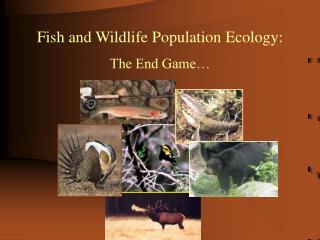 Fish and Wildlife Population Ecology: The End Game…