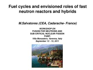 Fuel cycles and envisioned roles of fast neutron reactors and hybrids