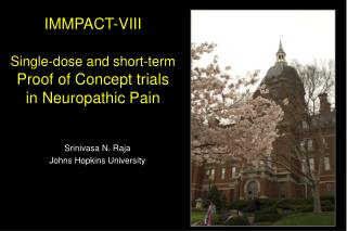 IMMPACT-VIII Single-dose and short-term  Proof of Concept trials  in Neuropathic Pain