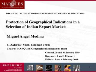 Miguel Angel Medina ELZABURU, Spain, European Union Chair of MARQUES Geographical Indications Team