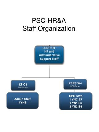 PSC-HR&A Staff Organization