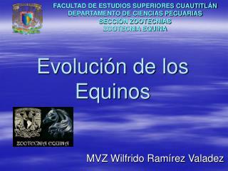 Evoluci n de los Equinos