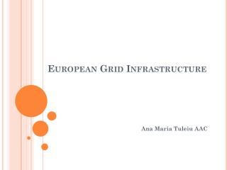 European Grid Infrastructure