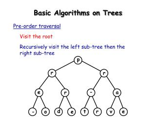 Basic Algorithms on Trees