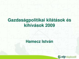 Gazdaság p olitikai  k ilátások  és kihívások  2009