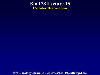 Bio 178 Lecture 15