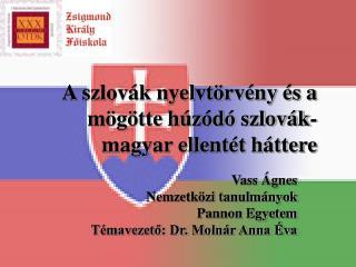 A szlovák nyelvtörvény és a mögötte húzódó szlovák-magyar ellentét háttere