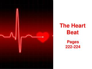 The Heart Beat