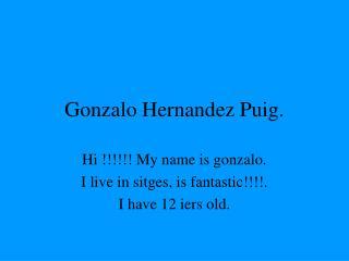 Gonzalo Hernandez Puig.