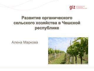 Развитие органического сельского хозяйства в Чешской республике