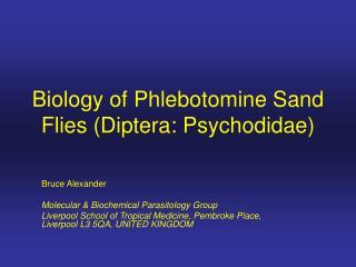 Biology of Phlebotomine Sand Flies (Diptera: Psychodidae)
