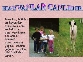 HAYVANLAR CANLIDIR