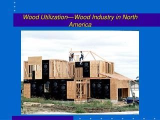 Wood Utilization�Wood Industry in North America