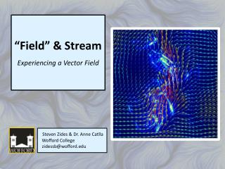 """Field"" & Stream Experiencing a Vector Field"