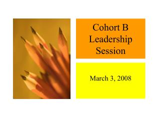 Cohort B Leadership Session