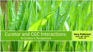 Curator  and CGC Interactions: