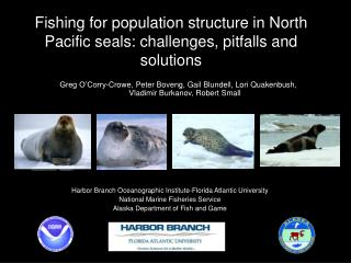 Fishing for population structure in North Pacific seals: challenges, pitfalls and solutions