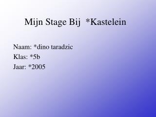 Mijn Stage Bij  *Kastelein