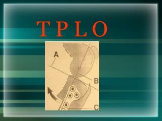 T P L O