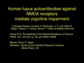 Human lupus autoantibodies against NMDA receptors mediate cognitive impairment