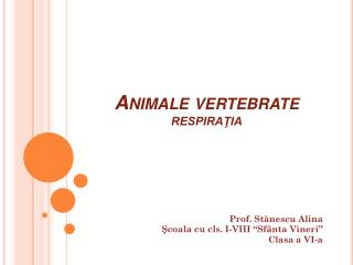 Animale vertebrate RESPIRAŢIA