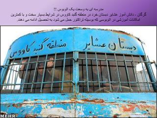 گروه سلامت نوجوانان ،جوانان ومدارس مرکز بهداشت استان