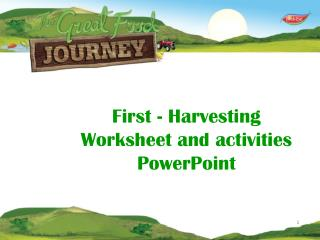 First - Harvesting Worksheet and activities PowerPoint