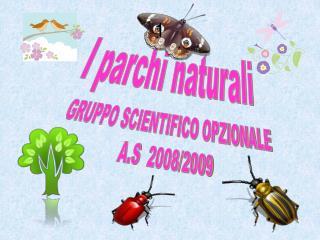 I parchi naturali  GRUPPO SCIENTIFICO OPZIONALE  A.S   2008/2009
