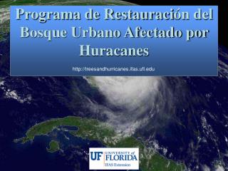 Programa de Restauraci �n del Bosque Urbano Afectado por Huracanes