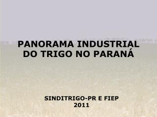 PANORAMA INDUSTRIAL DO TRIGO NO PARAN�