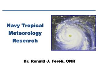 Navy Tropical Meteorology Research