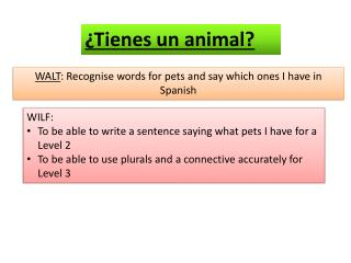 WALT :  Recognise  words for pets and say which ones I have in Spanish