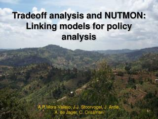 Tradeoff analysis and NUTMON:  Linking models for policy analysis