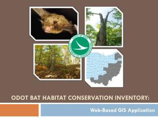 ODOT Bat Habitat conservation Inventory: