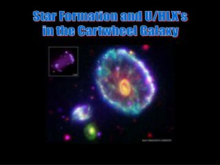 Star Formation and U/HLX's in the Cartwheel Galaxy