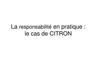 La  responsabilité  en pratique : le cas de CITRON