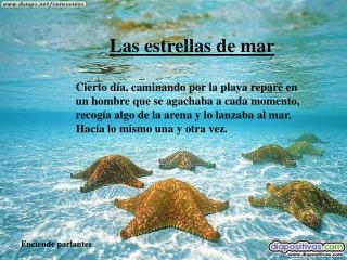 Las estrellas de mar  Cierto d a, caminando por la playa repar  en un hombre que se agachaba a cada momento, recog a alg