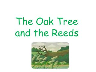 The  Oak Tree  and  the  R eeds
