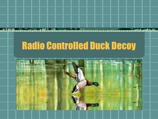 Radio Controlled Duck Decoy