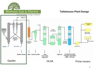 Tallahassee Plant Design