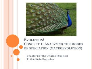 Evolution! Concept  1: Analyzing the modes of speciation (macroevolution )