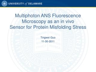 Multiphoton ANS Fluorescence Microscopy as an in vivo Sensor for Protein Misfolding Stress