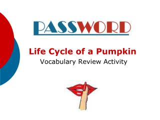 Life Cycle of a Pumpkin  Vocabulary Review Activity