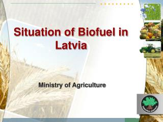 Situation of Biofuel in Latvia