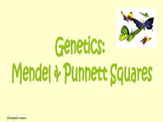 Genetics:  Mendel & Punnett Squares