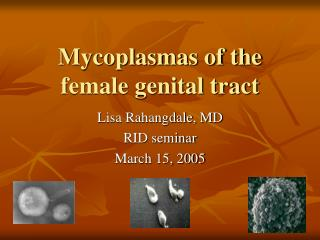 Mycoplasmas of the female genital tract